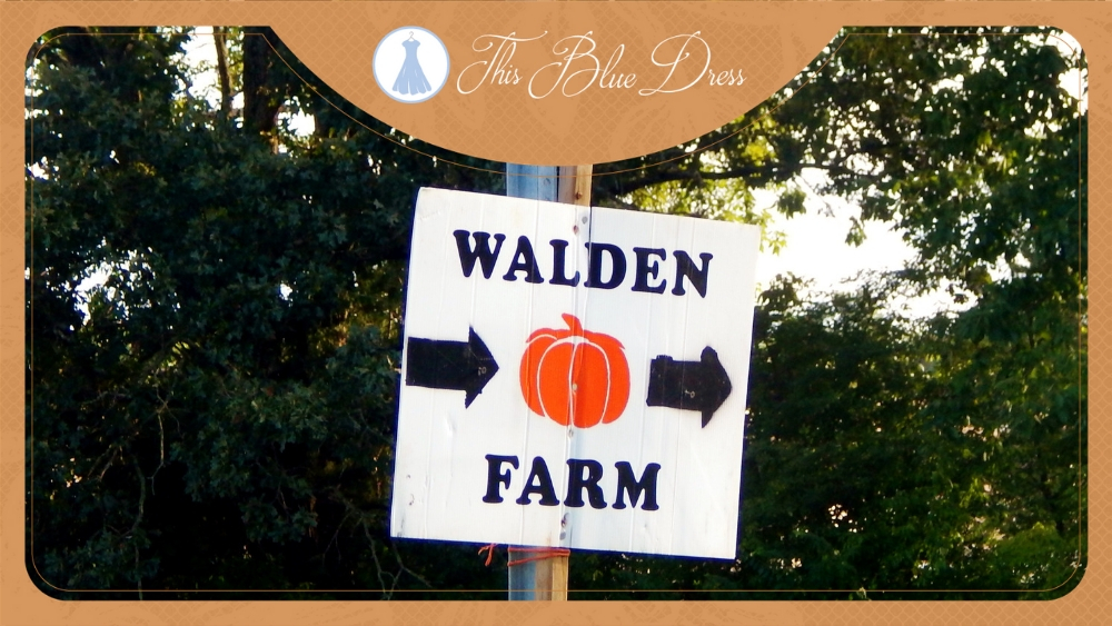 Walden Farm Review